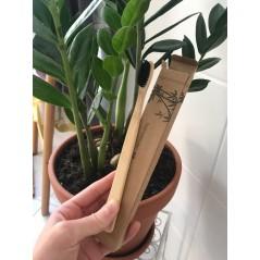 EKO Szczoteczka bambusowa...